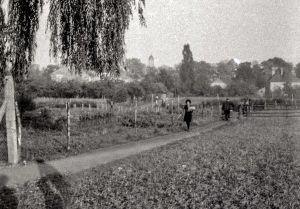 Mostek na ścieżce przy ul. Zacisze - 1978 rok